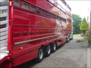 4 Deck Plowman Livestock Trailers for sale
