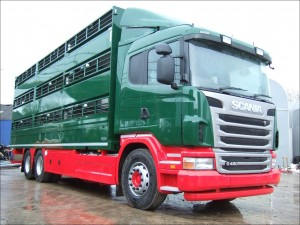 Plowman 3 Deck Rigid Livestock Scania