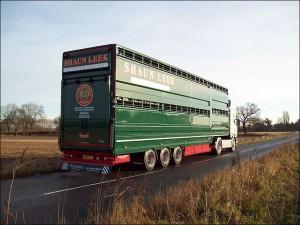 2-3 Deck Livestock Trailer Plowman Bros