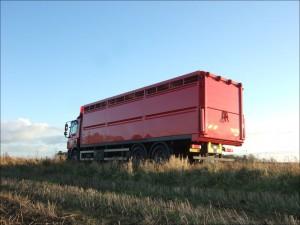 Single Deck Livestock Box