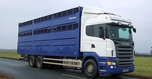 Plowman 3 Deck Rigid Livestock Box