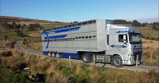 Livestock Transport